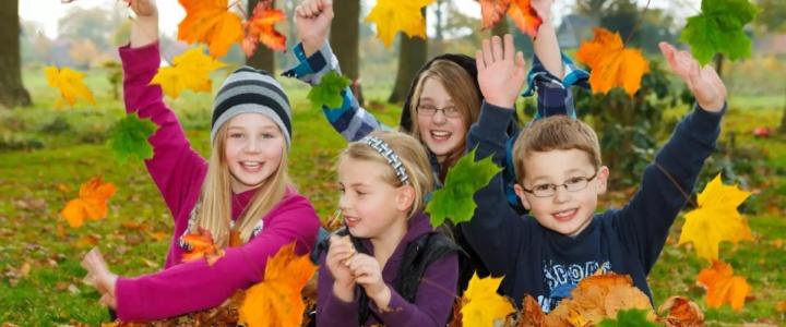 Осенние каникулы в школах республики начнутся 4 ноября