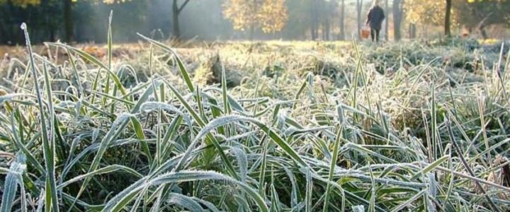 По северным районам республики ожидается похолодание до -3°С
