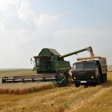 Андрей Кирста: «Сельское хозяйство в Рыбницком районе вышло на принципиально новый уровень»