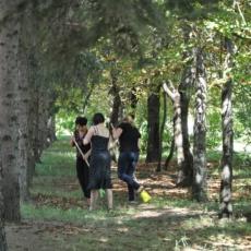 В Рыбнице начался осенний месячник по благоустройству и озеленению