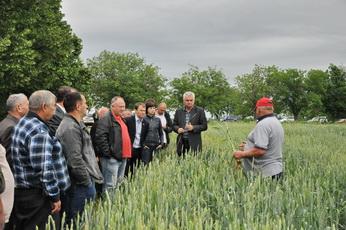 Сельскохозяйственные поля в Рыбницком районе находятся в удовлетворительном состоянии