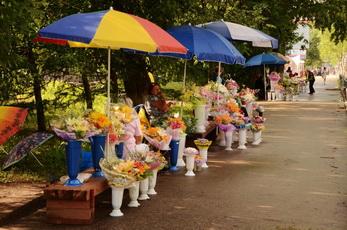 В Рыбнице будет организована временная площадка для торговли цветами
