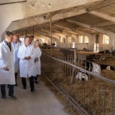 Глава государства посетил одну из агрофирм Рыбницкого района
