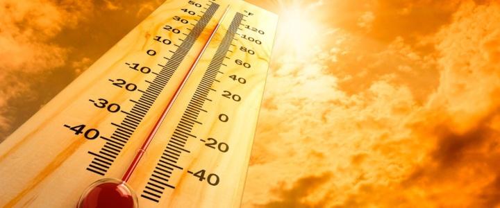 Правила поведения в жаркую погоду