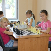 шахматы (5)