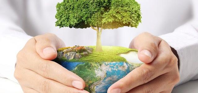 Объявлен конкурс на лучший логотип и слоган Года экологии и благоустройства