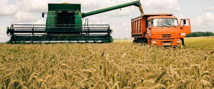Уборка урожая: к финишу –  хорошими темпами