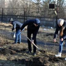 Волонтерство (3)
