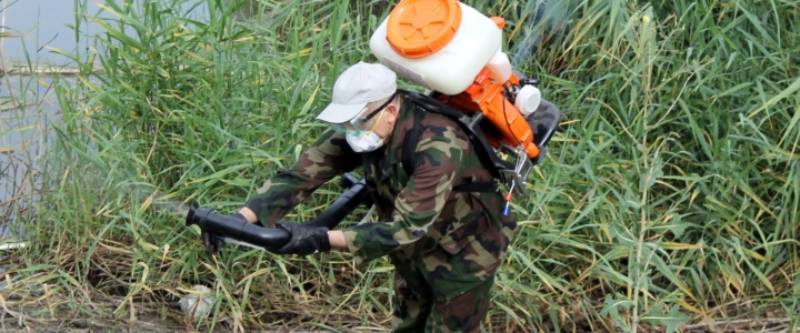 В Рыбнице и сёлах района продолжается обработка водоёмов от комаров