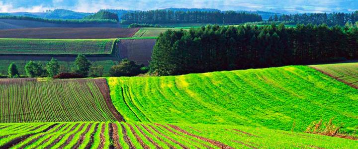 Информация об изменении механизма выплат компенсации и материального вознаграждения гражданам, имеющим право на земельную долю (пай)