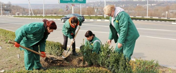 РПКХБ: нелёгкий труд на благо города